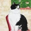 『赤い椅子に座る猫』A cat on the red chair.